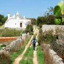 I profumi della Puglia